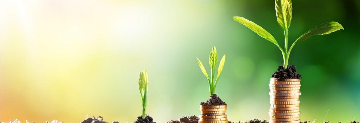 Saving money without sacrifices - how to save smartly?